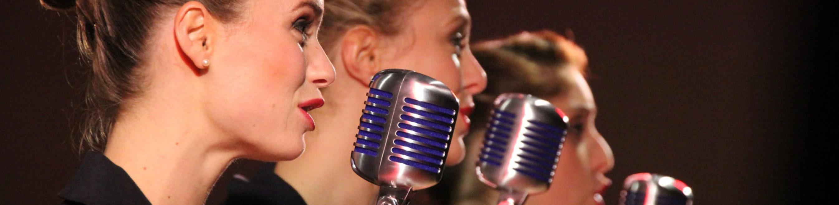 Il mestiere del canto