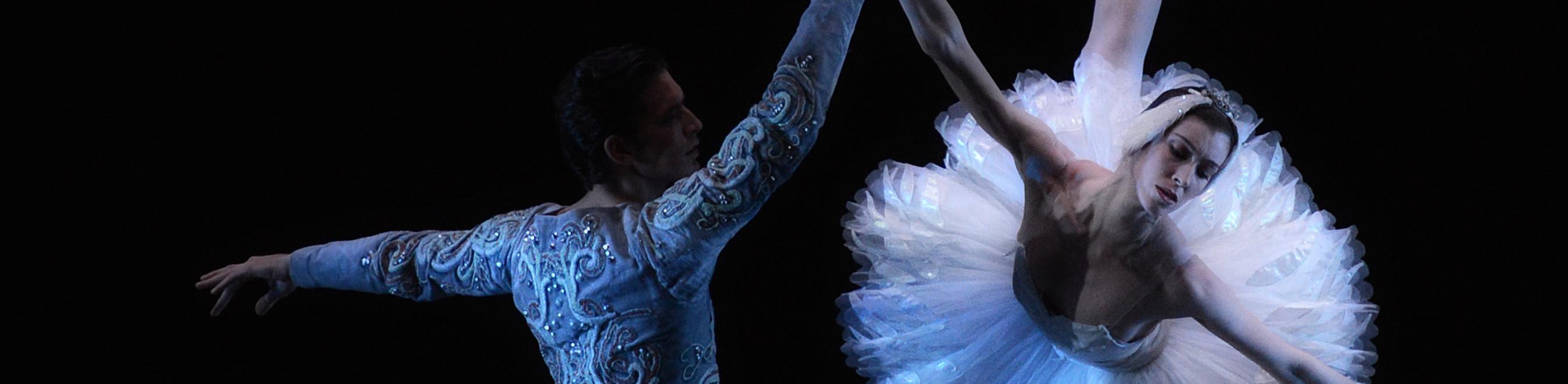 TORNEREMO A DANZARE! Giornata Internazionale Danza